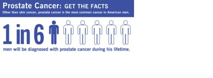 prostate_pic1